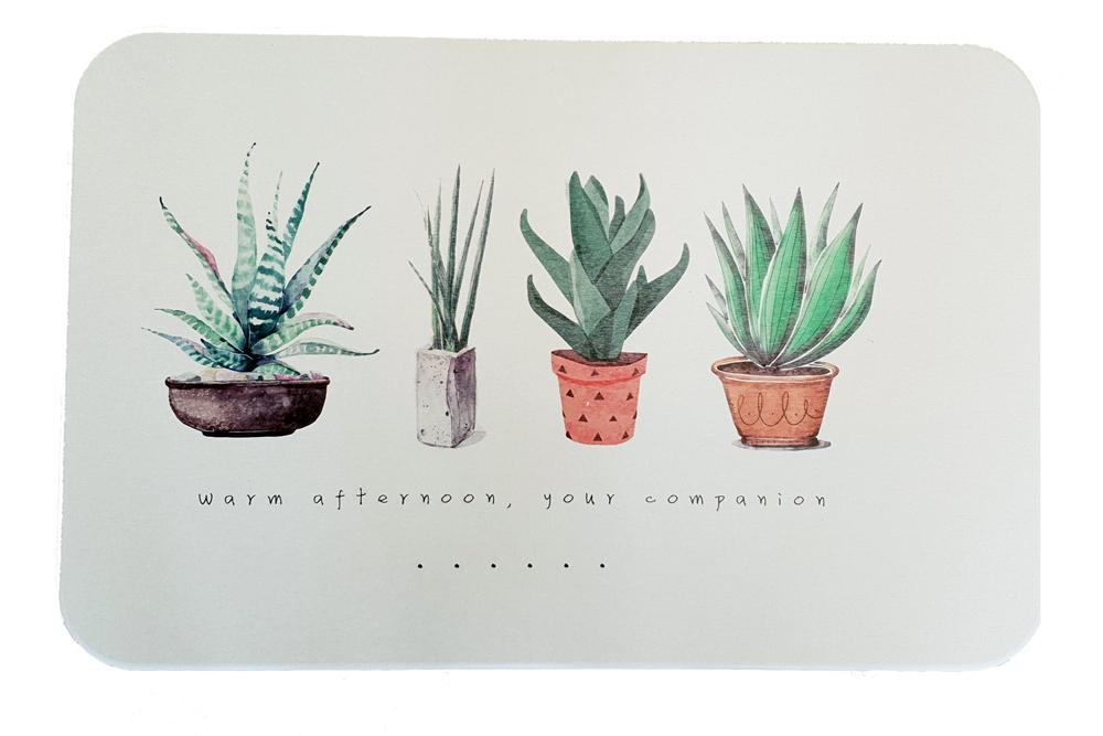 Tapis de diatomite Plantes